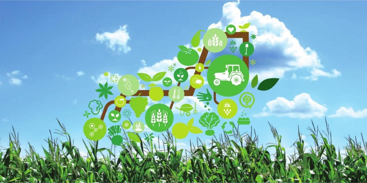 Agricoltura più efficiente