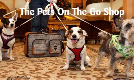 Per cani viaggiatori