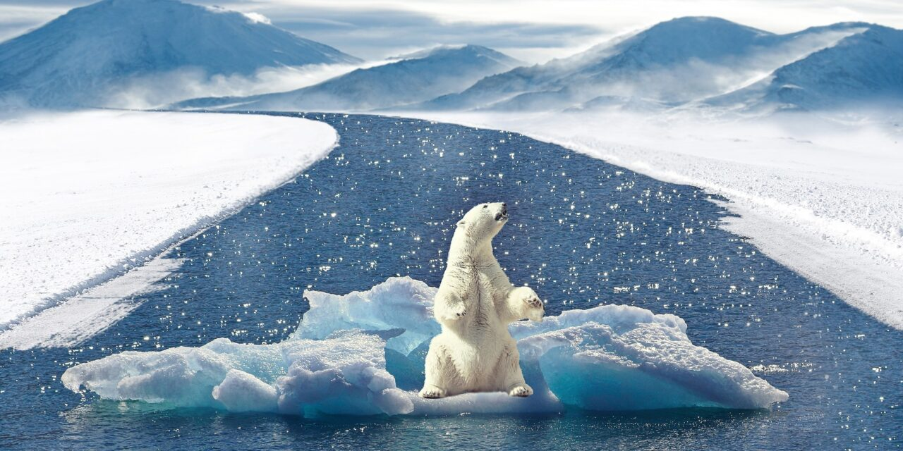 Pericoloso divario sulla percezione della reale situazione climatica